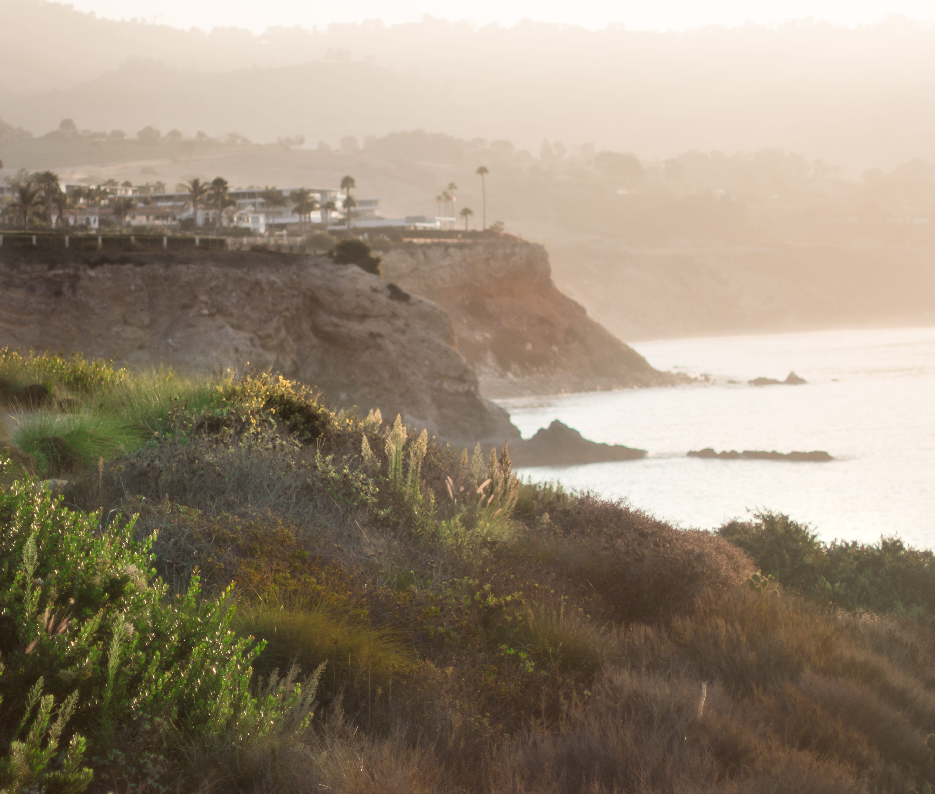 Morning landscape shots at Terranea